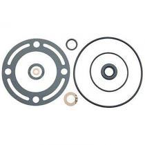 Power Steering Pump Seal Kit 65-72  D1AZ...